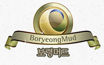 540910490a291392173c2b30_boryeongbrandlogo.jpg