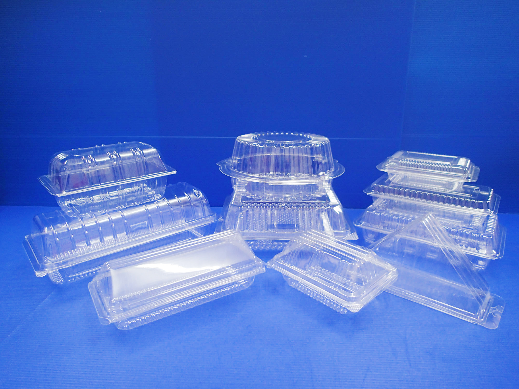 53607ddcebc442547500038c_B2-OPS-Clear-Trays-with-Lid-1.jpg