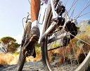 Globalrider Trading Pte Ltd Photos