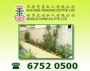 Hua Hng Trading Co Pte Ltd Photos