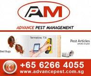 Advance Pest Management