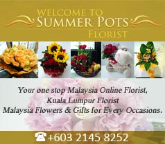 Summer Pots Florist Photos