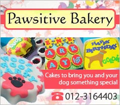 Pawsitive Pets Bakery Photos