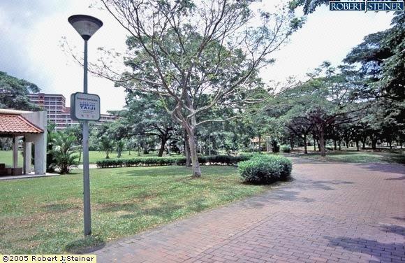 Punggol Park, Taiji Corner