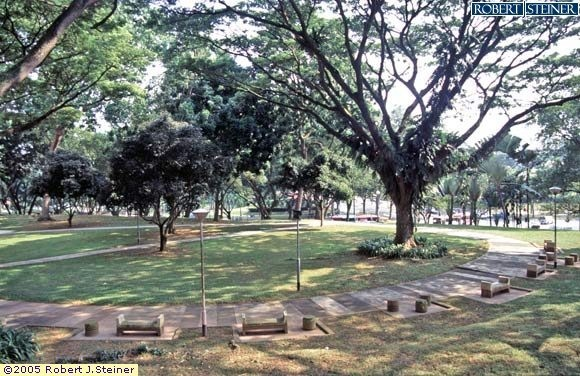 Henderson Park, Greenery