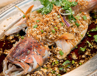 54dd5bc8761358d52c096cf9_Steamed-Red-Grouper-with-Crispy-Radish-Floss.jpg