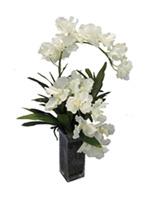 54b607f07f72257c2dde535c_orchid-5.jpg