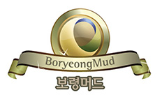 54081b426996865637ef1e8e_boryeonglogo.jpg