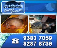 Everflash Seafood Supplies Pte Ltd
