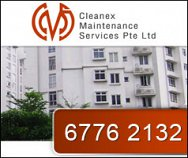 Cleanex Maintenance Services Pte Ltd
