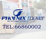 Phoenix Mover Pte Ltd