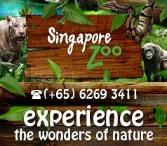 Singapore Zoological Gardens Photos