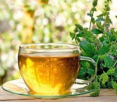 Tea Ideas Pte Ltd Photos