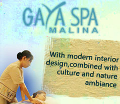 The Stylish Gaya Spa Photos