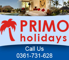 Primo Holidays Photos