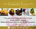Summer Pots Florist Photos
